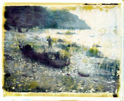 landscapemanip2-2263928