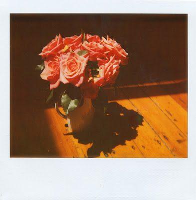 roses2_0001-6852033