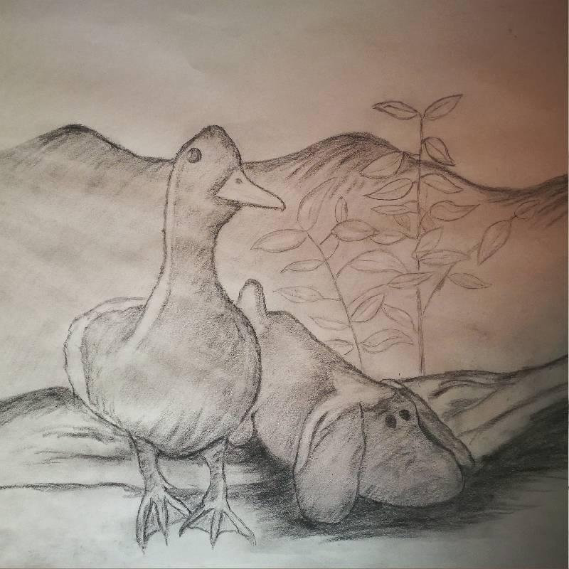 2019-01-17-duck