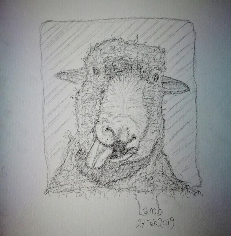 2019-04-27-lamb