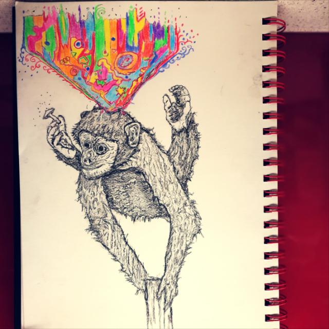 2019-09-08-monkey