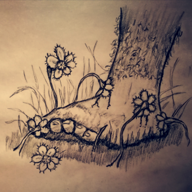 2019-12-08-petal