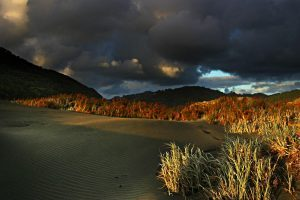 lighting_dunes-300x200-2200727