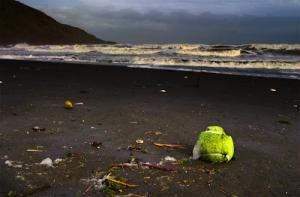 tennis-ball-beach+copy.jpg