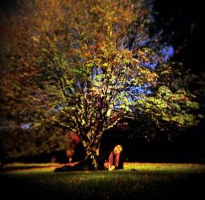 Dreamers Tree