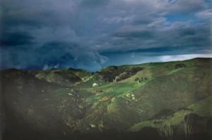 Waikato Storm